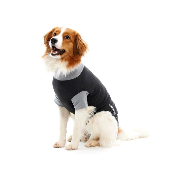 Buster Classic Body Suit for Dogs - Pica's Pets