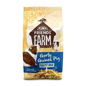 Tiny Friends Farm Gerty Guinea Pig 850g - Pica's Pets