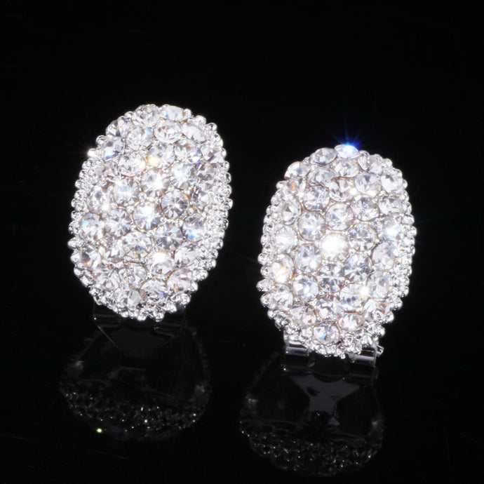 Women's Classic Design Romantic AAA CZ Stone Stud Earrings