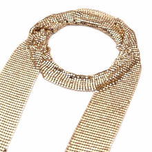 Beautiful Long Draping Metallic Choker Collar Necklace