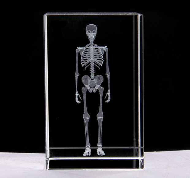 Holographic Skeleton