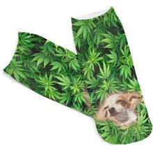 Doggy Haze Low Cut 3D Printed Ankle Socks