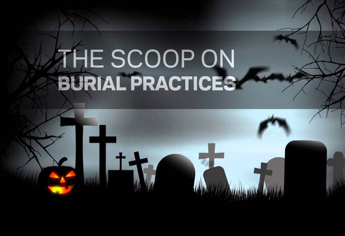 BURIAL PRACTICES - TED TALK