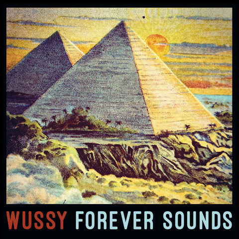 Wussy - Forever Sounds (CD or LP)