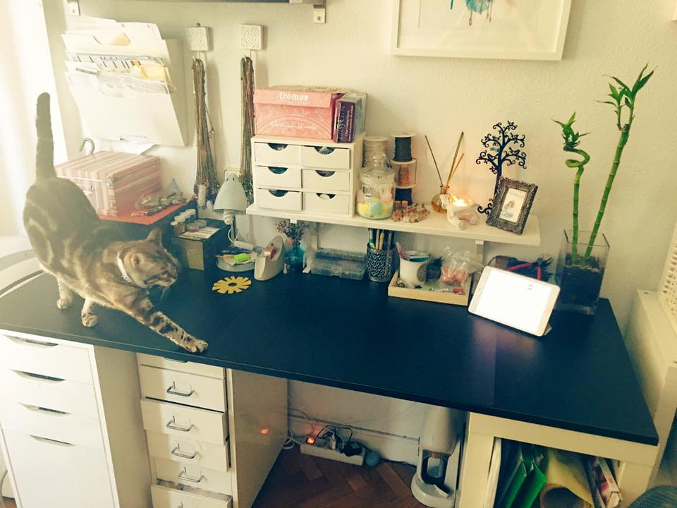 This is my little and cute workstudio. I work from home always accompanied by my two furry children, Natasha and Trece.