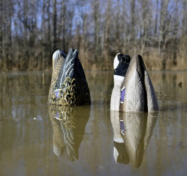 Why you should mix in some bottoms up decoy feeders - The Higdon Magnum Duck Butt
