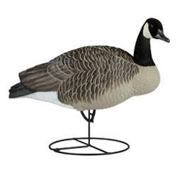 Dakota Canada Upright Full Body Decoys (6pk)