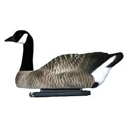 Dakota Floater Canada Geese (6pk)