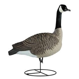 Dakota Canada Sentry Decoy (6pk)