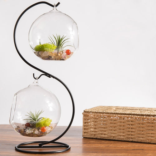 S shape Metal Stand With Air Glass Vases