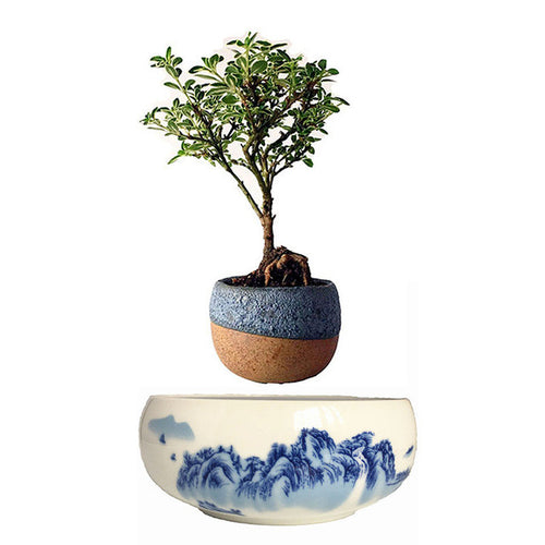Ceramic Air Floating Plant Pot