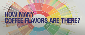 How Many Coffee Flavors are There: Inventing the Flavor Wheel