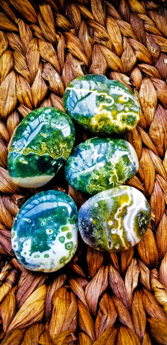 Ocean Jasper Palms & Pebbles (Sizes Vary) || Madagascar || Ocean Spray - 17.00