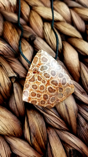 Coral Fossil Pendant on adjustable German rolled leather