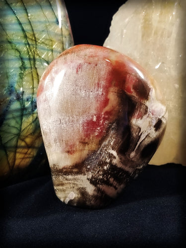 Skully face Petrified Wood with Crystallized Vein banding || Madagascar || Hand Polished #1