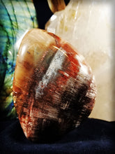 Petrified #4 Hand Polished Petrified Wood with multiple crystalline pockets