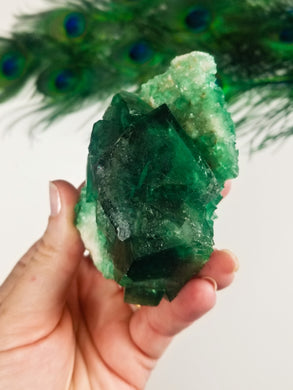 Cubic Fluorite Cluster || Green || Discourages Chaos || Balance || #6
