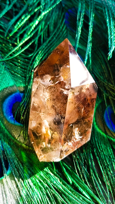 Angel Wing || Inclusion #57 || Amphibole Quartz || Brazil || Higher Realms Meditation