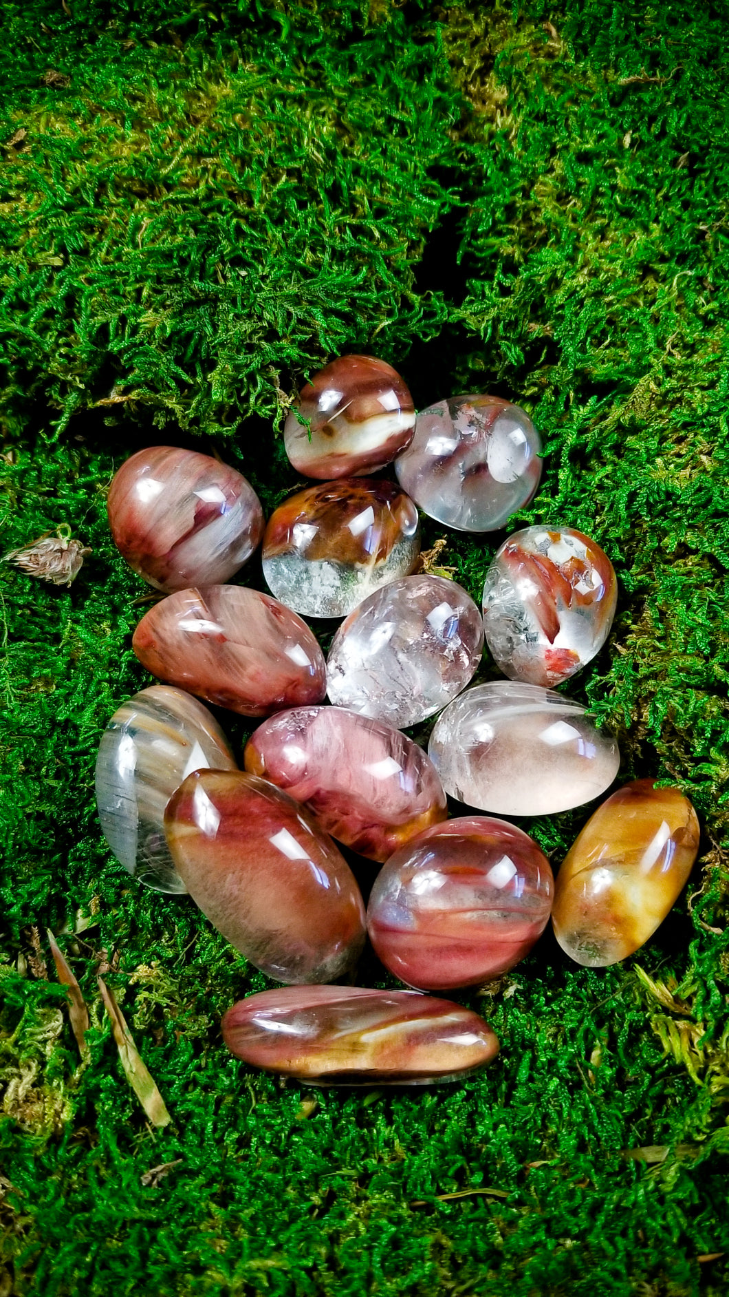 Pick your Size || Amphibole Quartz Lens  || Angel Wing || Brazil || Higher Realms Meditation ||