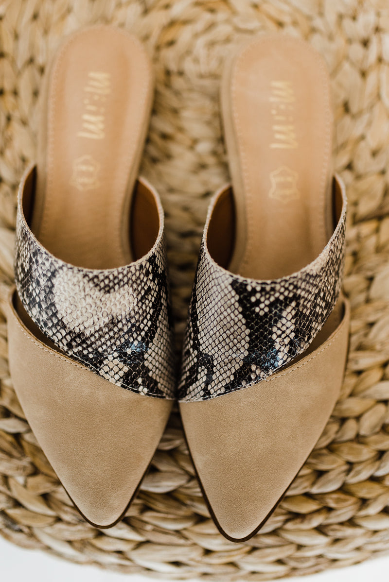 snake print pointed toe shoe