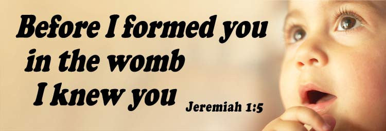 Before I formed you in the womb I knew you   Jeremiah 1:5