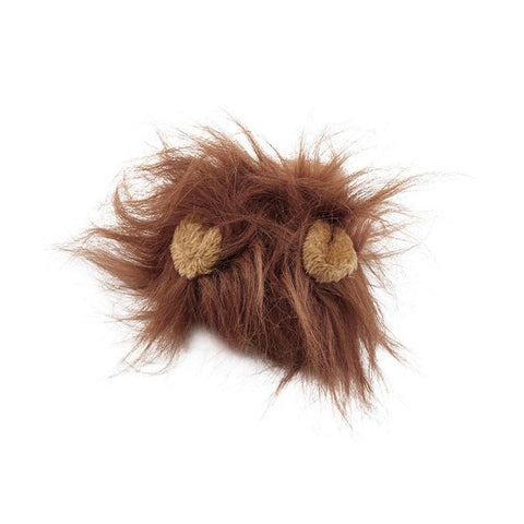 Image of Lion's Mane Cat Hood