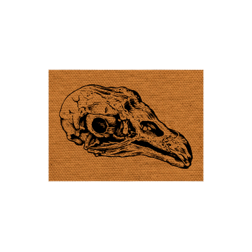 Vulture Skull Patch