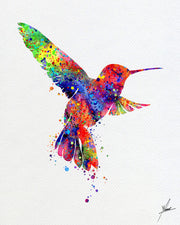 Hummingbird Watercolor Print illustrations Art Print Wedding Gift Wall Art Poster Giclee Wall Decor Art Home Decor Wall Hanging Item 241