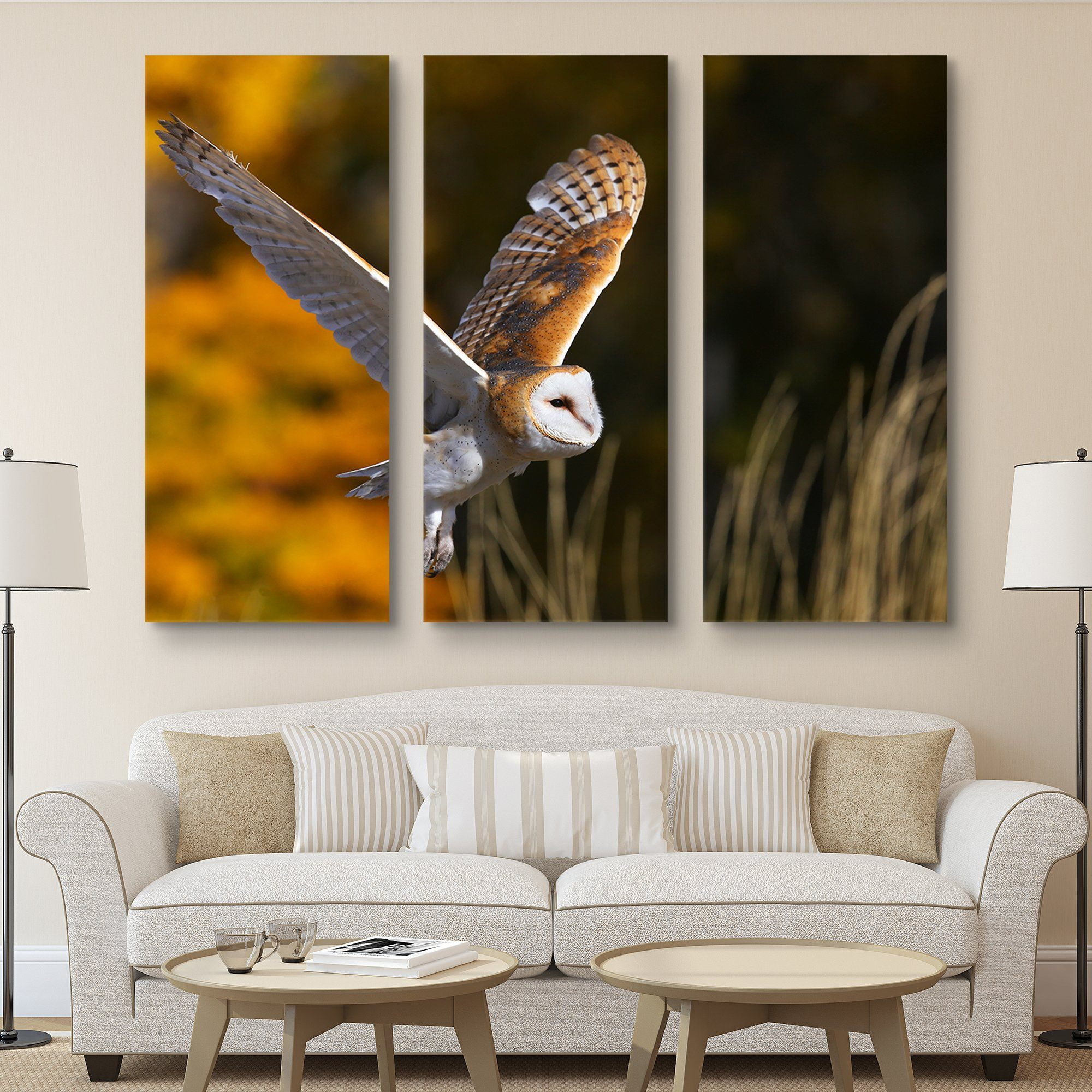 3 piece Barn Owl wall art