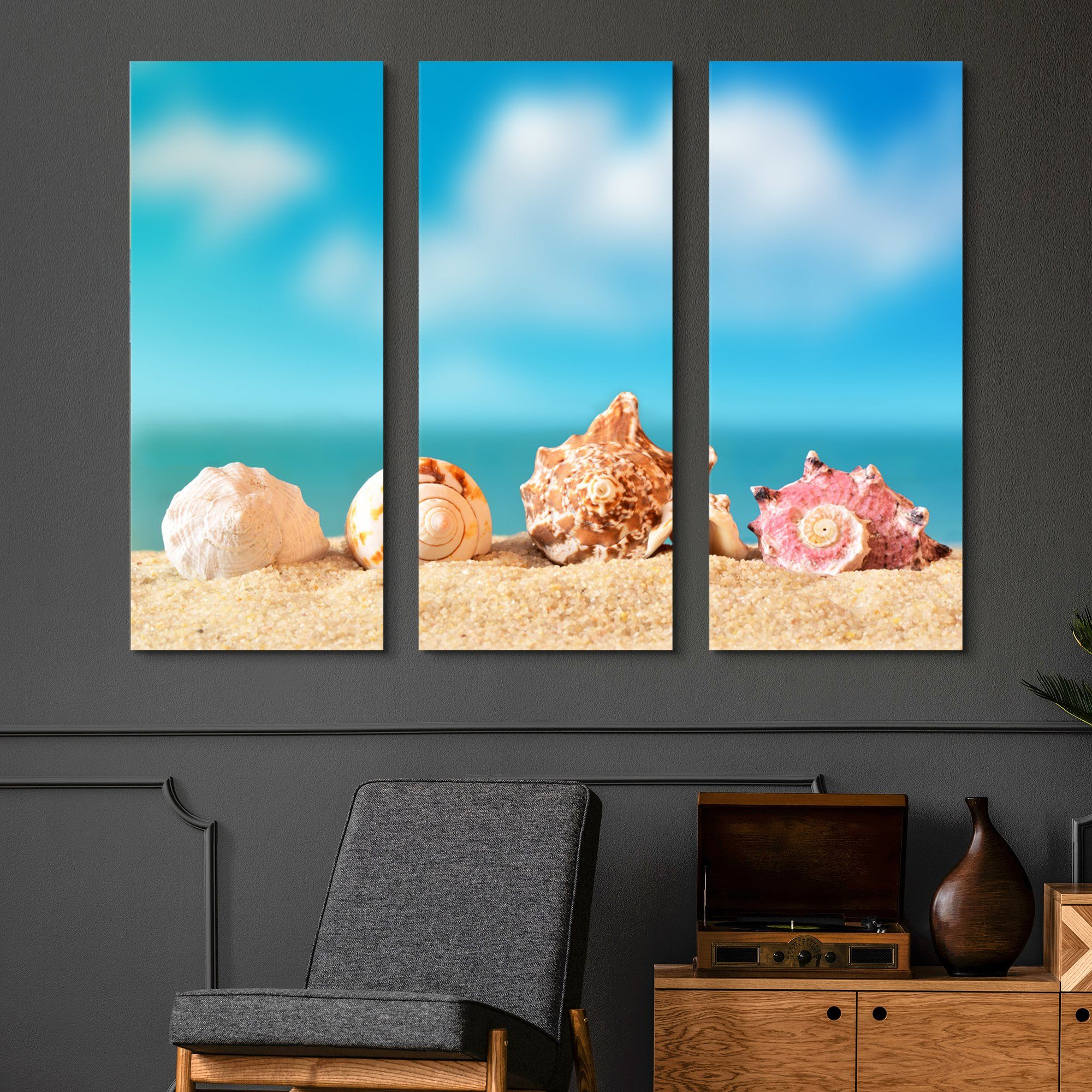 3 piece Seashells wall art