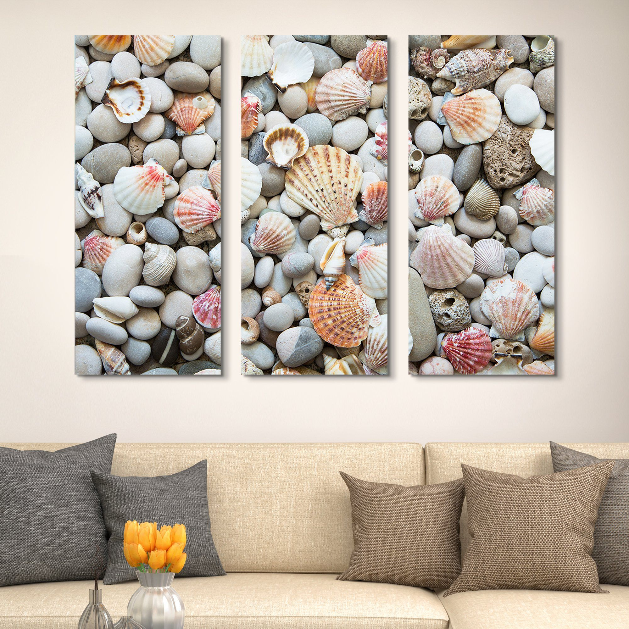 3 piece Seashells by the Seashore wall art