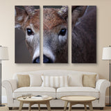 3 piece Buck wall art