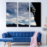 3 piece Mountain Climber wall art