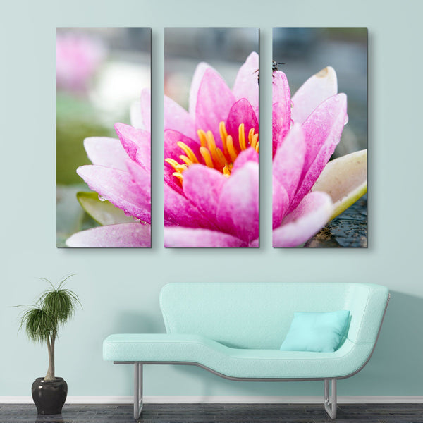 3 piece Lotus And A Bee wall art