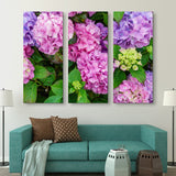 3 piece Hydrangea Flowers wall art
