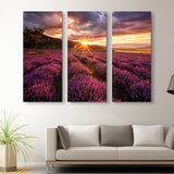 3 piece Lavender Field wall art
