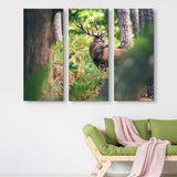 3 piece Red Deer in Autumn Forest wall art