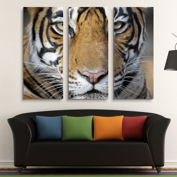 3 piece Bengal Tiger wall art