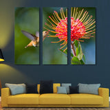 3 piece Working Hummingbird wall art