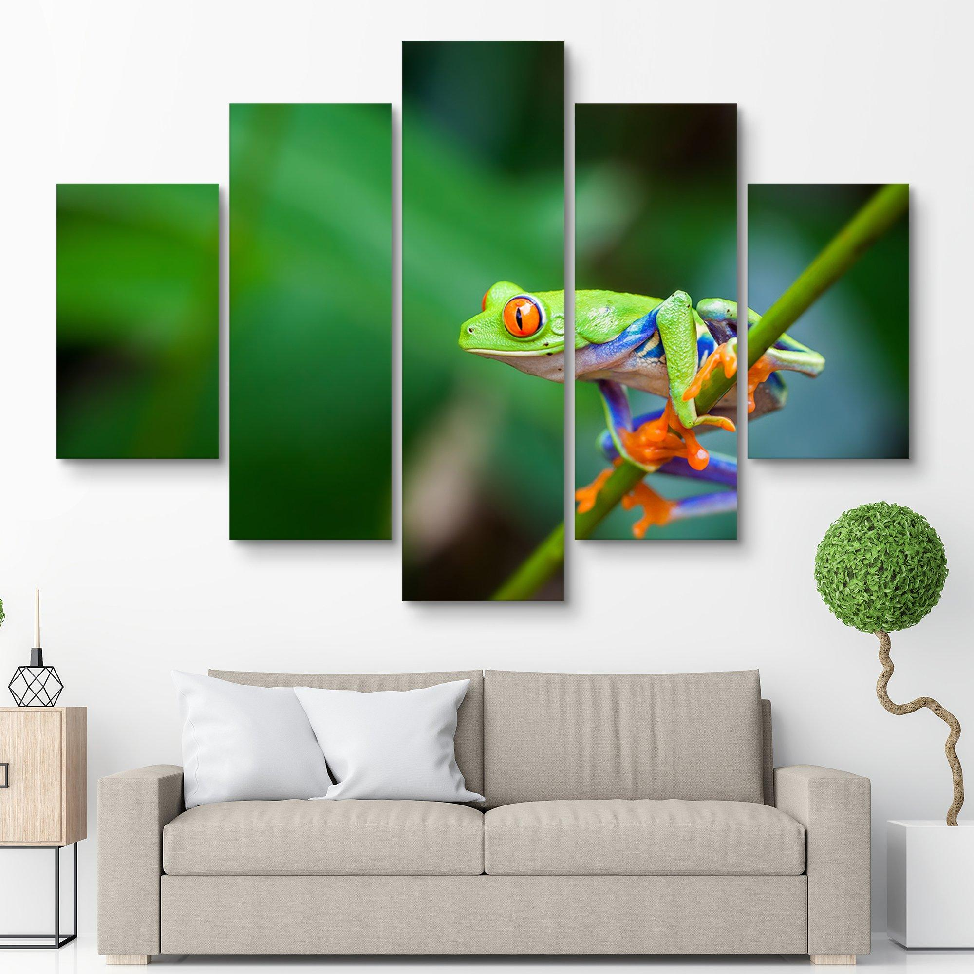 5 piece Red Eye Frog wall art