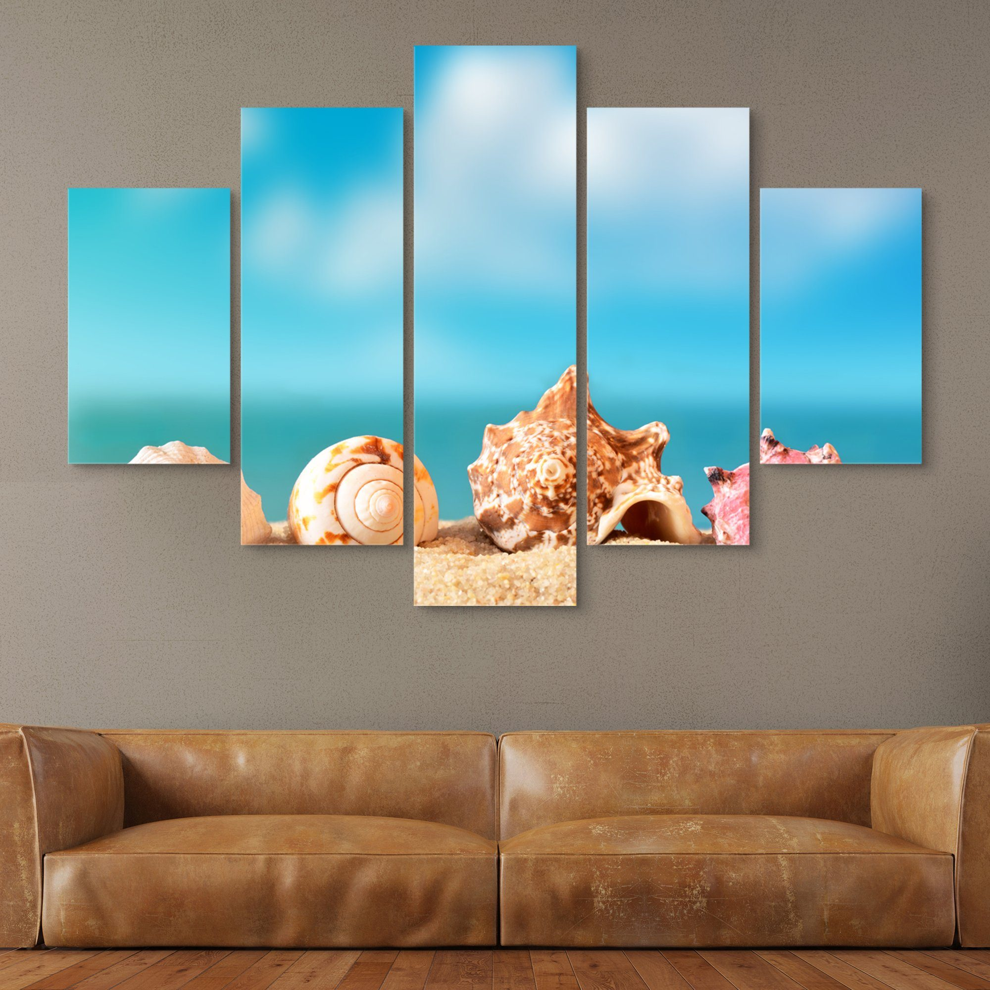 5 piece Seashells wall art