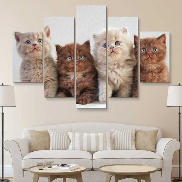 5 piece Four Kittens wall art