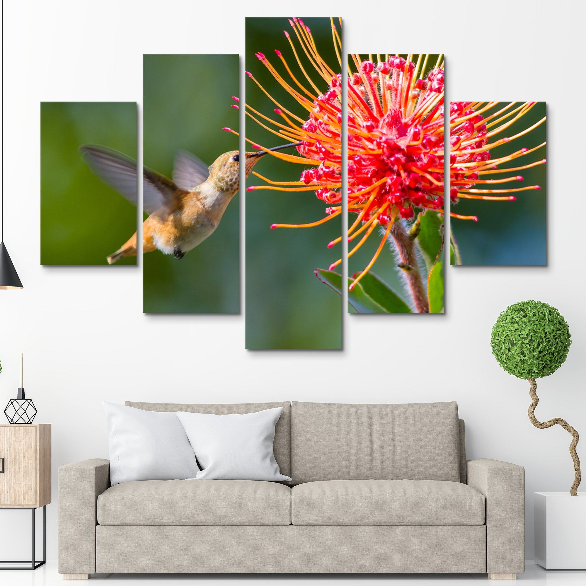 5 piece Working Hummingbird wall art