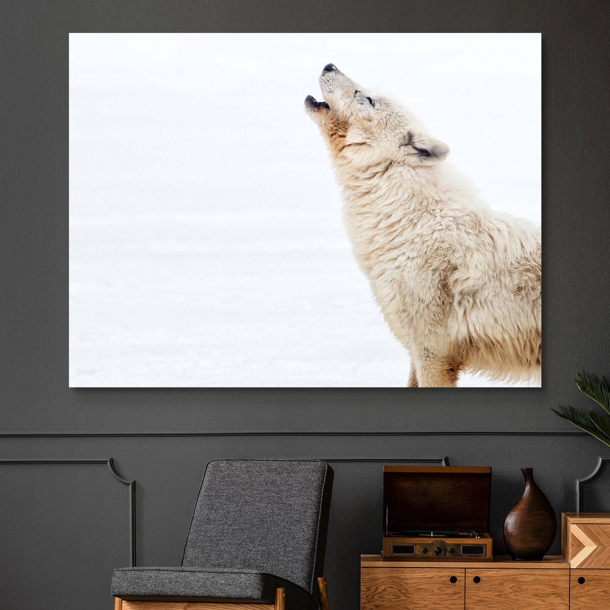 Arctic Wolf Howling wall art