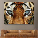 Tiger Eyes wall art