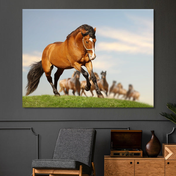 Stallion with the Herd wall art
