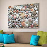 sea shells home art