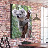 Curious Koala love wall art