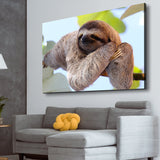 Happy Sloth living room wall art