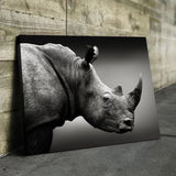 Rhinoceros art